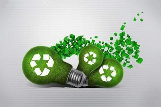 绿色领导者鼓励对碳的早期行动